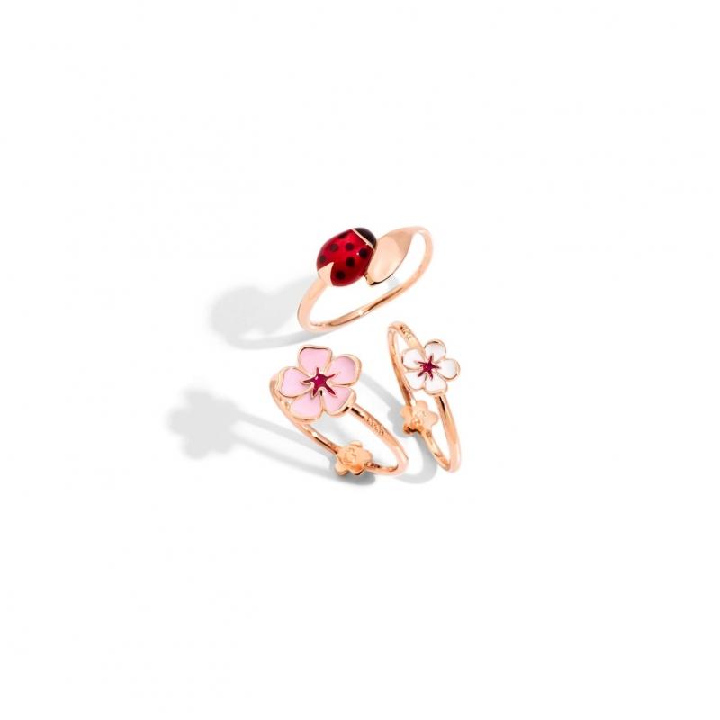 tris-anelli-fiore-e-coccinella